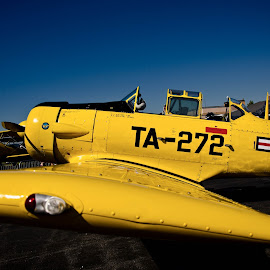 Old fighter plane by Valerie Dyer - Transportation Airplanes