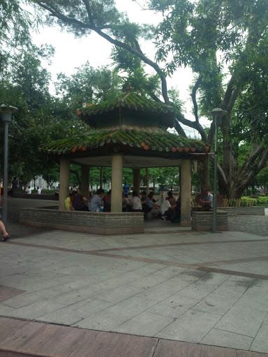 QY.Sun yet-san park-pavilion with moss