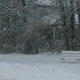 That bench is pretty lonely come the winters. by Gaynel . - Artistic Objects Furniture