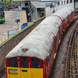 Isle of Wight Train by Paul Coomber - Transportation Trains ( transport, rail, isle of wight, coastal, trains,  )