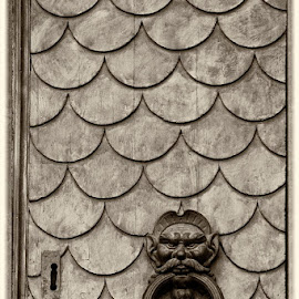 Fish scale door. by Gale Perry - Buildings & Architecture Architectural Detail (  )
