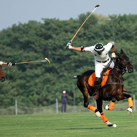 Polo in Pakistan by Imran Niazi - Sports & Fitness Other Sports ( pakistan, children, polo )