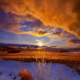 So Many Times Before by Phil Koch - Landscapes Prairies, Meadows & Fields ( wisconsin, ray, phil koch, landscape, crop, sun, sky, nature, tree, snow, perspective, horizons, clouds, park, twilight, art, horizon, scenic, shadows, field, winter, fog, sunset, meadow, trees, lines, beam, sunrise, farm field, mist,  )