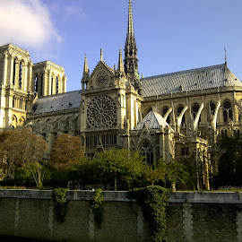 Notre Dame by Athena Kapsokavadi - Buildings & Architecture Public & Historical