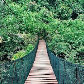 Instead of building walls, we should be building bridges. Vicente Fox by Valeria Vanessa - Instagram & Mobile Instagram ( explorebandung, discover55, vscocam, premiumposts, vscobdg )