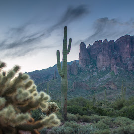 supersitions 2 by Joe Faherty - Landscapes Deserts