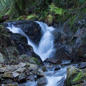 Pedra Ferida by Nuno Miguel Valente - Landscapes Waterscapes ( penela, espinhal, pedra ferida, waterfall )
