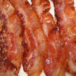 Just Bacon by Eric Hansen - Food & Drink Meats & Cheeses ( food, meat, bacon, breakfast meat )