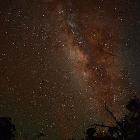New Moon and Milky Way Galaxy at Mauna Kea by David Nadolney - Landscapes Starscapes ( milky way galaxy, stars, mauna kea, new moon, landscape, nightscape )