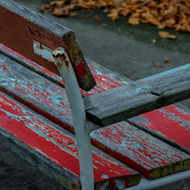 Winter is coming by Lasbi Naboj - Artistic Objects Furniture ( bench, artsitic, decaying, wooden bench, public, furniture, object,  )