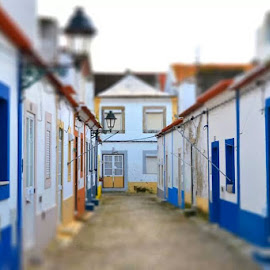 Just passing by! by José Borges - City,  Street & Park  Neighborhoods ( alcochete, portugal )