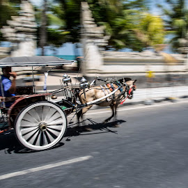 Horse Wagon in Bali by Bert De Wilde - Transportation Other ( car, bali, speed, transport, horse, wagon )