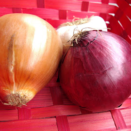 Onions In Red Basket by Kmetica Vesela - Food & Drink Fruits & Vegetables ( onions, red, color, beautiful, basket, amateur, photography,  )