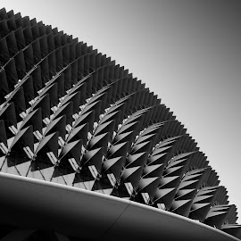 The Esplanade Concert Hall, aka the Durian. by James Jie - Buildings & Architecture Architectural Detail