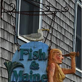 Fish & Maine Inn by Raquel Gonzalez - City,  Street & Park  Markets & Shops ( sign, maine )
