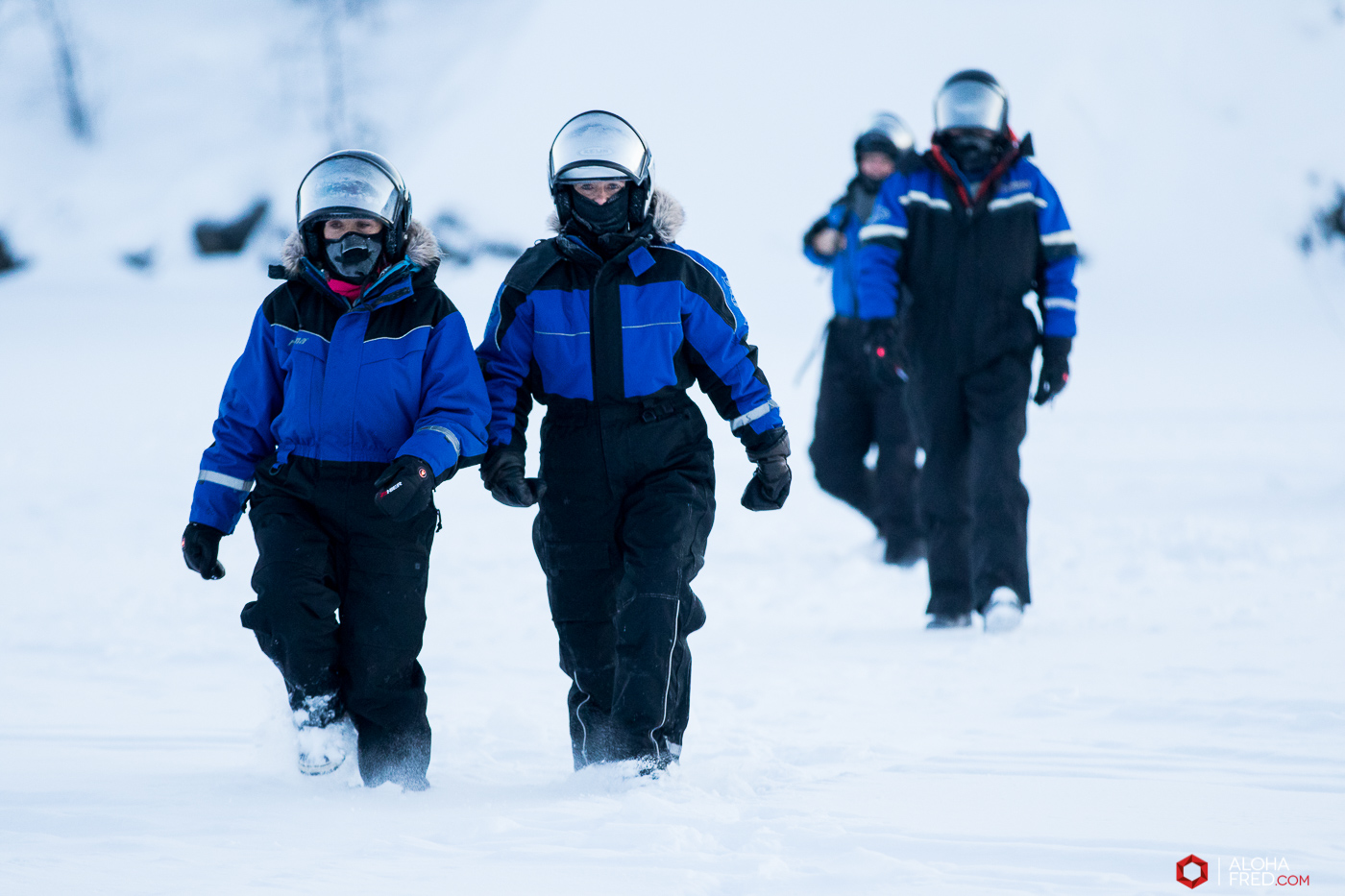 0009 - alohafred Laponie - 6R1A5985