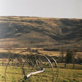 Taken outside Yakima by Maynard Jeffers - Landscapes Prairies, Meadows & Fields