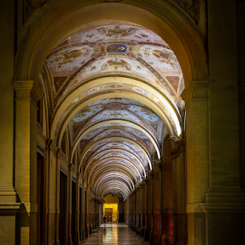Bologna by Alecu Gabriel - Buildings & Architecture Public & Historical ( bologna, italy )