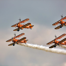 Breitling Wingwalkers by Satya Adt - News & Events Sports ( aerosuperbatics        wingwalking      breitling wingwalkers     pilot      aircraft     daredevil pilot     royalairforce )
