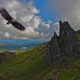 Sea Eagle Isle of Skye by Gary Fox - Landscapes Mountains & Hills