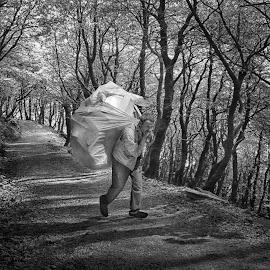 by Iwan Anda - Digital Art People