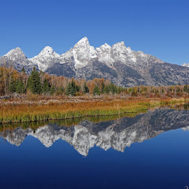 Sawtooth by Randall Brewer - Landscapes Mountains & Hills ( water, snow capped, mountains, fall colors, wyoming, reflections, october, river )