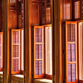 Legislative Windows by Lou Plummer - Buildings & Architecture Other Interior ( austin, detail, congress, texas, shutters,  )