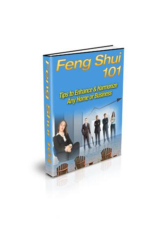 Feng Shui 101