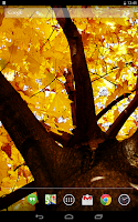 Screenshot of Autumn Leaves Live Wallpaper