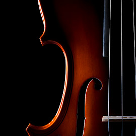 Fiddle by Sam Geoffrey - Artistic Objects Still Life ( music, musical instrument, violin, fiddle )