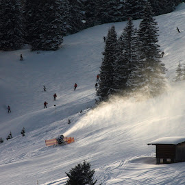 Oberlecher Schi by Michal Valenta - Sports & Fitness Snow Sports ( winter, austria snow, oberlech )