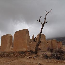 by Jody Drummond - Landscapes Deserts