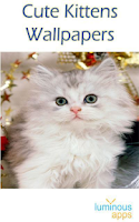 Screenshot of Cute Kittens Wallpapers