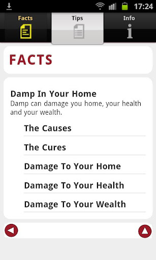 Damp In Your Home