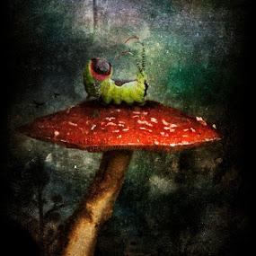 Caterpillar by Tina Bell Vance - Illustration Sci Fi & Fantasy