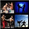 Mixed Martial Arts Wallpaper icon