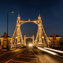 Albert Bridge. by Christine Fitzgerald - Buildings & Architecture Bridges & Suspended Structures