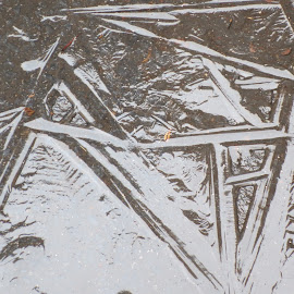 Ice Letters by Marcia Taylor - Novices Only Abstract (  )