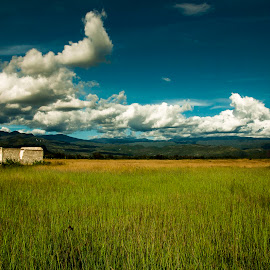 Home Sweet Home by Semuel Angga Angga - Landscapes Prairies, Meadows & Fields ( homeliness, papua, wamena, fields )