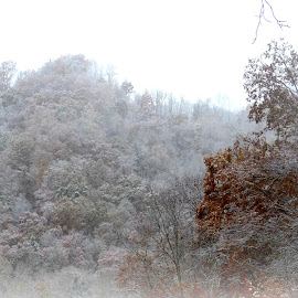 !st. Snow in WV ! Nov. 1st. by Linda Blevins - News & Events Weather & Storms (  )