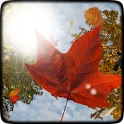 Falling Leaves Free Wallpaper icon
