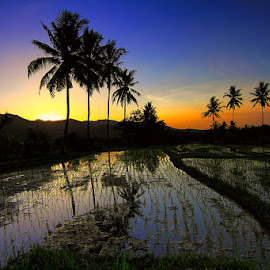 Senja di Busungbiu by Denny Iswanto - Landscapes Prairies, Meadows & Fields