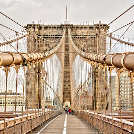 Brooklyn Bridge  by Dave Freeman - Buildings & Architecture Bridges & Suspended Structures