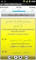 Screenshot of Audio Pack (Al-Ghamidi)