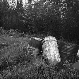 Tunnur by Ágústa Eyþórsdóttir - Instagram & Mobile iPhone ( barrels, black and white, grass, forest, grey )