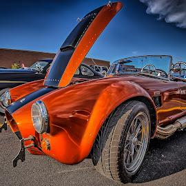Orange Cobra by Ron Meyers - Transportation Automobiles