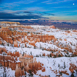 Bryce by Gregory Ruderman - Landscapes Caves & Formations ( moon, utah, bryce, canyon, hoodoo, moonrise )