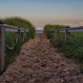 Basin Head entrance to the beach. by Trish Golden - Landscapes Beaches