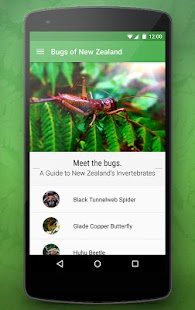 Bugs of New Zealand Free - screenshot