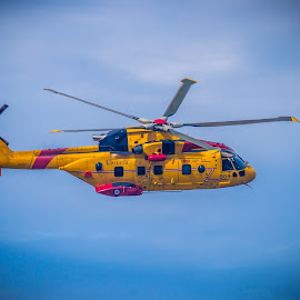 Canadian Sea Rescue Helicopter by Lee Davenport - Transportation Helicopters